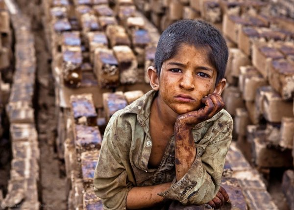 Фото: Mohammadreza Momeni - Фото портрет