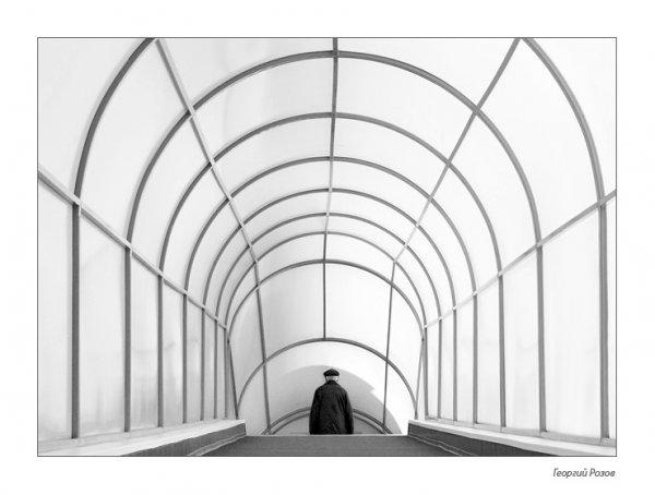 "Фотограф Георгий Розов (рубрика ""Диалоги"") - №29"