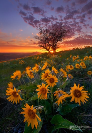 Красота природы - Пейзаж в районе Палуз