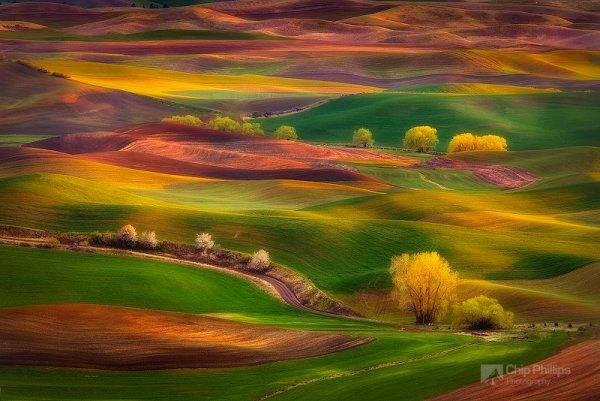 красота природы мира - Холмы на закате