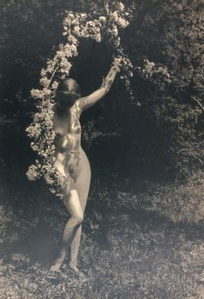 Юрий Еремин. Весна. Начало 1920-х. Авторский серебряно-желатиновый отпечаток. Коллекция Алекса Лахмана