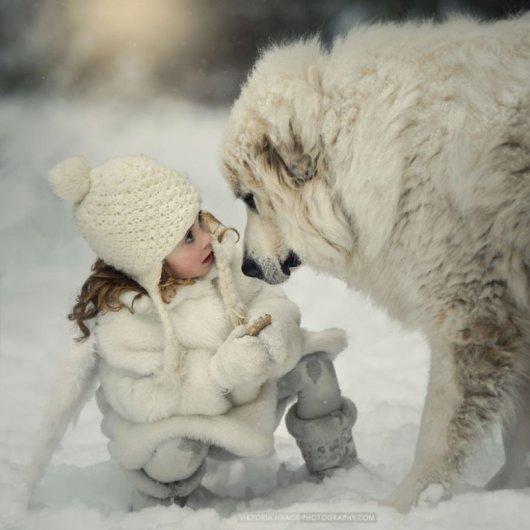 Лучшая собака для ребенка 3