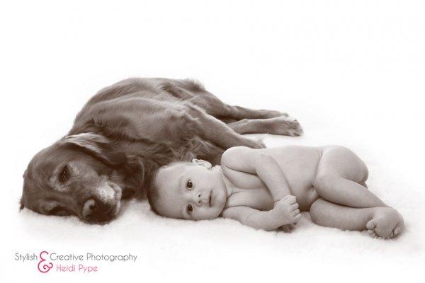 Лучшая собака для ребенка 23