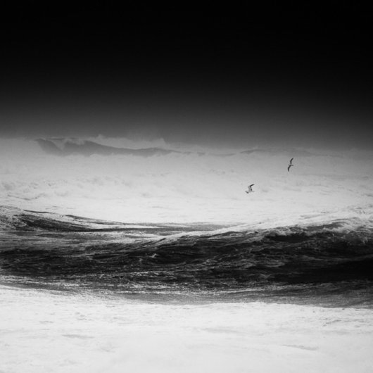 черно-белый пейзаж 1