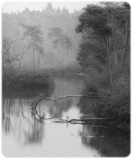 черно-белый пейзаж 17