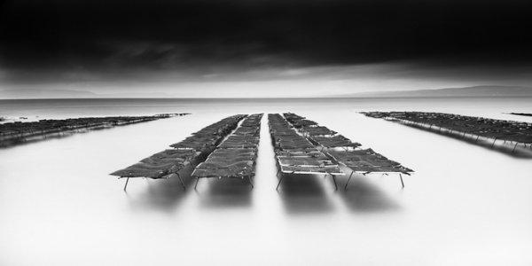 черно-белый пейзаж 21